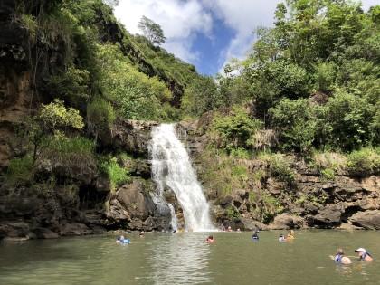 Waimea Valley Falls in Waimea Valley Oahu Hawaii