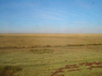 Saryarka - Steppe and Lakes of Northern Kazakhstan