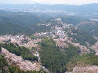 Yoshino Mountain